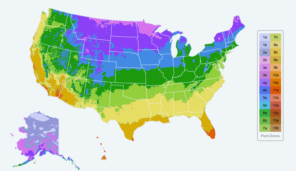 Planting Zones Map Find Your Plant Hardiness Growing Zone - Map-of-us-planting-zones