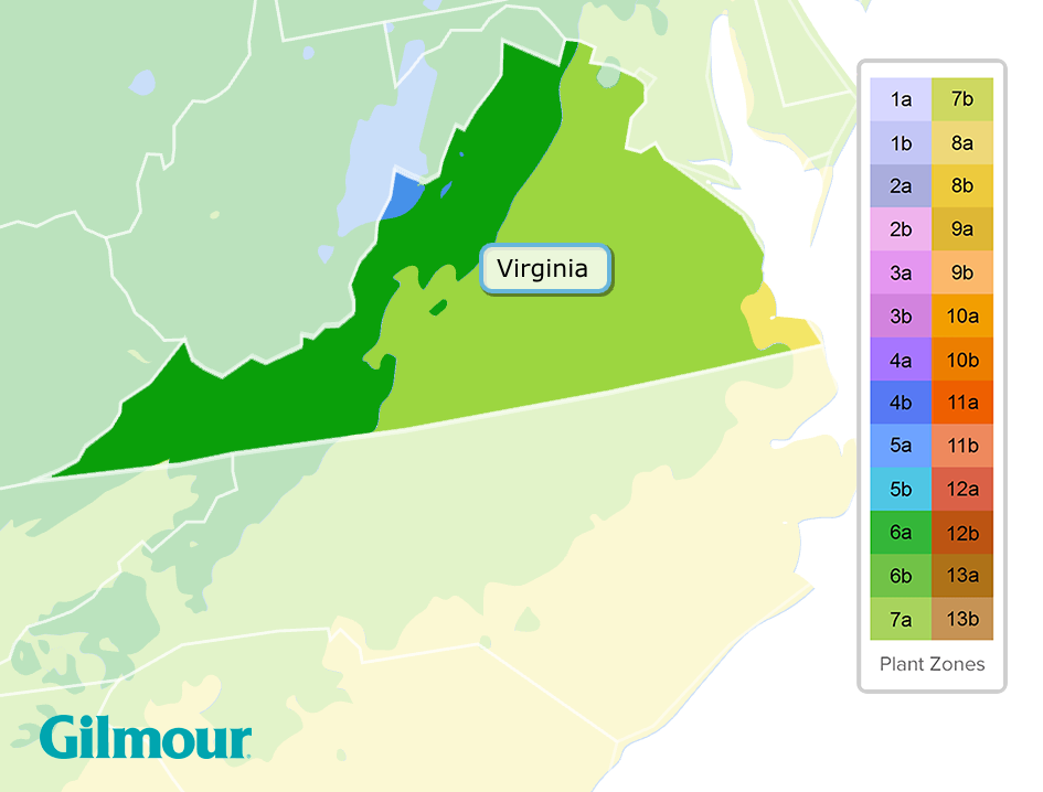 virginia planting zone map - What Gardening Zone Is Northern Virginia